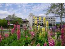 ◆【初夏】ホテルサンバード外観(ルピナス)◆