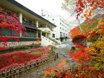 紅葉のホテル外観<秋>