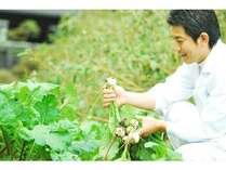 【スタンダード】親和苑の『旬菜物語』☆