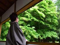 豊かな緑と吹き抜ける風の中で心やすらぐひとときを堪能できる宿です。
