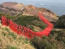 123基の鳥居が並ぶ、絶景スポット。元乃隅稲成神社