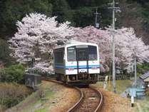 【さよなら★三江線プラン】三江線『川戸駅』まで無料送迎致します(要予約)豪華会席料理でおもてなし♪
