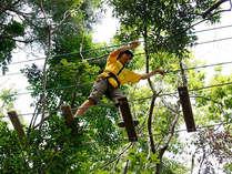 ターザニア/安全をしっかり確保して、勇気とスリルの空中散歩