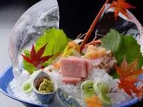季節ごとに獲れる新鮮な魚介類を豪華に使用!
