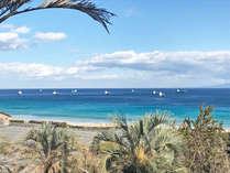 「風待港」として昔から栄えた下田。風が強い日は、当館前の白浜の沖に、停泊して風が止むのを待ちます。