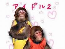 ■阿蘇猿まわし劇場■大自然を体感しながら、とっても賢いお猿さんを見に来て下さい☆