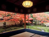 ■足立美術館■秋の寿立庵の庭園。美術館は当館から徒歩30秒!お得なチケット付プランも販売中♪