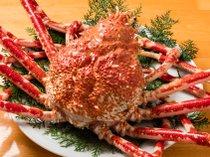 駿河湾深海の「へだ特産高足ガニ」は一度は食べてみたいね♪
