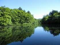 町内一番のフォトスポット、雲場の池