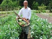 伊豆のおいしいお野菜をお届けいたします