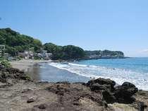 今井浜海岸には岩場もあります。カニや魚を獲る磯遊びも出来ます。