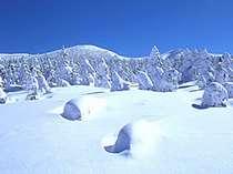 赤倉の上質な雪をスキーで満喫!