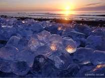 ジュエリーアイス 大津海岸に打ち上げられる氷の塊が太陽の光を受け美しく輝く自然現象です。