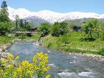 【春~初夏】車で30分、白馬村の風景