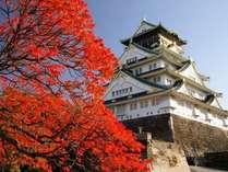 大阪城公園の紅葉は色んな種類が見れますよ♪