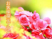 ◆10%還元◆【1日3組限定】感謝還元!ご愛顧に感謝の気持ちを込めて・・・♪