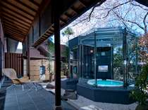 特別貴賓室付庭園露天風呂、真上に咲く桜と青空のコントラストをお楽しみいただけます