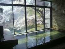 【女性用大浴場】窓の向こうには満開の桜!この時期ならではの景色をお楽しみください(18/4/17)