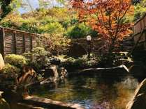 【秋の貸切露天風呂】『楓の湯』。紅葉を眺めつつ温泉をお楽しみください(撮影日18/10/22)