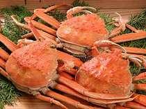 赤々とした蟹…中には美味しさぎっしり♪