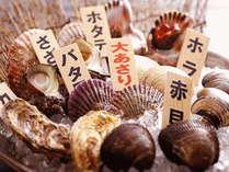 ねぼ~や名物 活き貝のプリフィックス