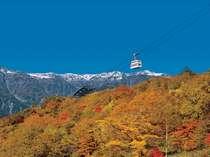 真赤に色づいた山の上を進む、紅葉シーズンの新穂高ロープウェイ