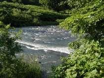 川風を感じて♪ 宿のすぐそばに流れています・・