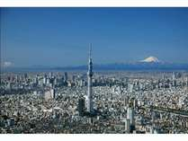 東京スカイツリー(R)の画像