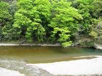 十津川の川