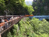 【トロッコ電車&夕食バイキング】トロッコ電車チケット手配付き♪売り場に並ばなくてすむのでラクラク♪