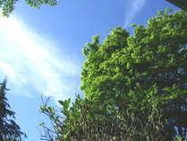 【赤城自然園入園券&お弁当付】『赤城自然園』で豊かな自然に触れる!四季を感じる旅★