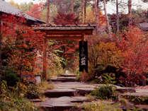 ~外門 秋~ 赤や黄に色づいた木々は、ずっと眺めていられそう・・・。