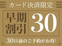 宿泊日30日前 カード決済限定特別プライスプランです。