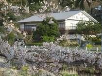 民宿 旅館 なか川◆じゃらんnet