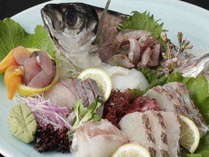 [お刺身盛合]瀬戸内海のお魚が大集合!