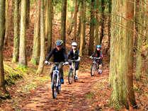 バイクで森林散策♪