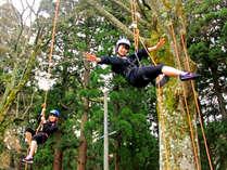 森と友達♪ツリーイング体験
