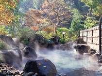 強アルカリ泉は自家源泉100%滑らかな素肌を湯巡りで実感