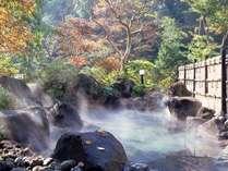 【露天風呂】  *大自然の新鮮な空気と全国トップの強アルカリpH11.3の温泉の両方をご堪能ください