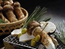 【料理一例】  *旬のマツタケを炭火焼で。焼いている最中に立ち上る芳しい香りをお楽しみください