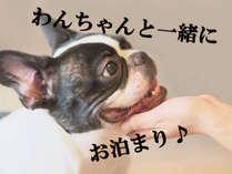 【わんちゃんと一緒にお泊り♪】大切なペットと一緒に旅行をお楽しみください(*´∀`*)ノ