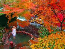 【大浴場】紅葉の時期になると渓流沿いの「川湯」では美しい紅葉を愛でながら温泉を愉しんでいただけます