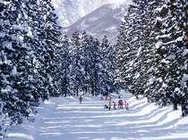 林間スキーコース