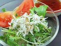 【一品料理-イメージ】若旦那特製・おまかせサラダ!内容は日替わりとなります。