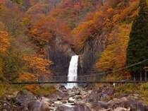 笹ヶ峰高原・苗名滝の紅葉狩りと秋の味覚会席に舌鼓♪