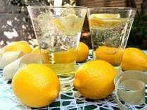 しまなみ檸檬サワー!!シュワッとはじけて檸檬の風味が香るサワーをぜひご堪能下さい♪