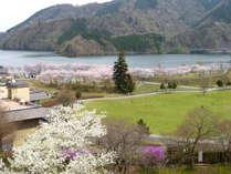 ◆宮ヶ瀬湖 桜まつり◆スペシャル桜料理を堪能♪特典満載!【2食付】じゃらん限定