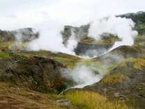 北海道の活火山【有珠山】まで車で約10分!