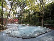 2016 【平日限定】 65歳以上のアクティブシニアプラン・・・30畳タイプ露天風呂付客室1泊2食付