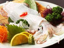海辺の街で食す 【呼子イカ】 はすうっと透き通り、くさみの無い甘みと食感がたまらない